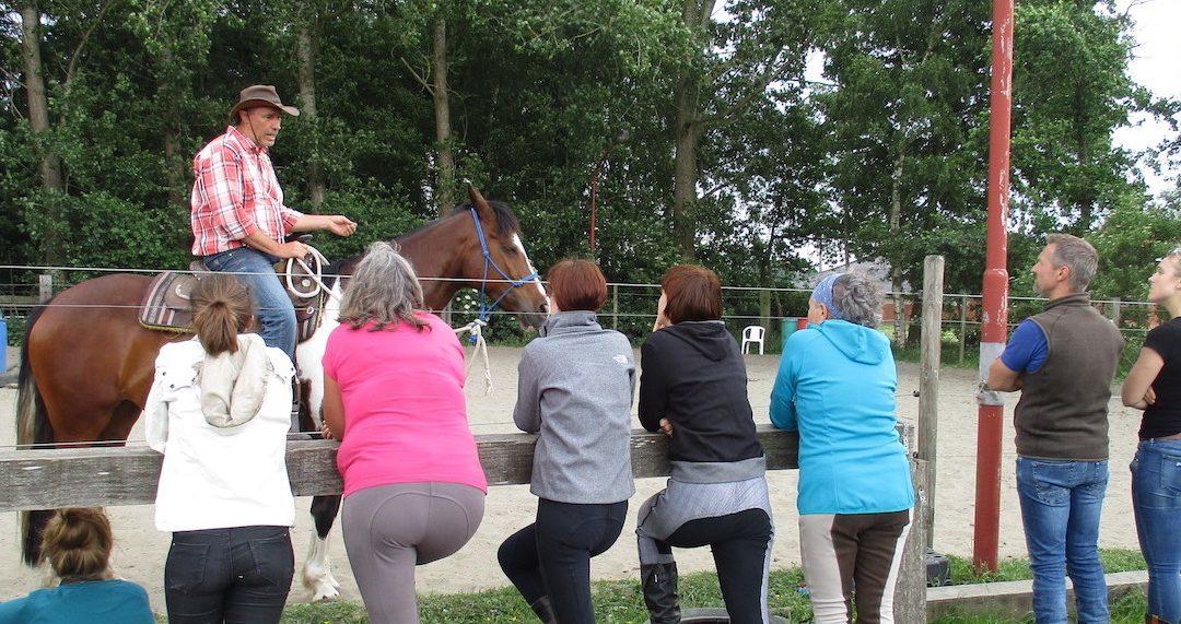 Paardenkamp: Horsemanship en bitloos westernriding met overnachting voor volwassenen