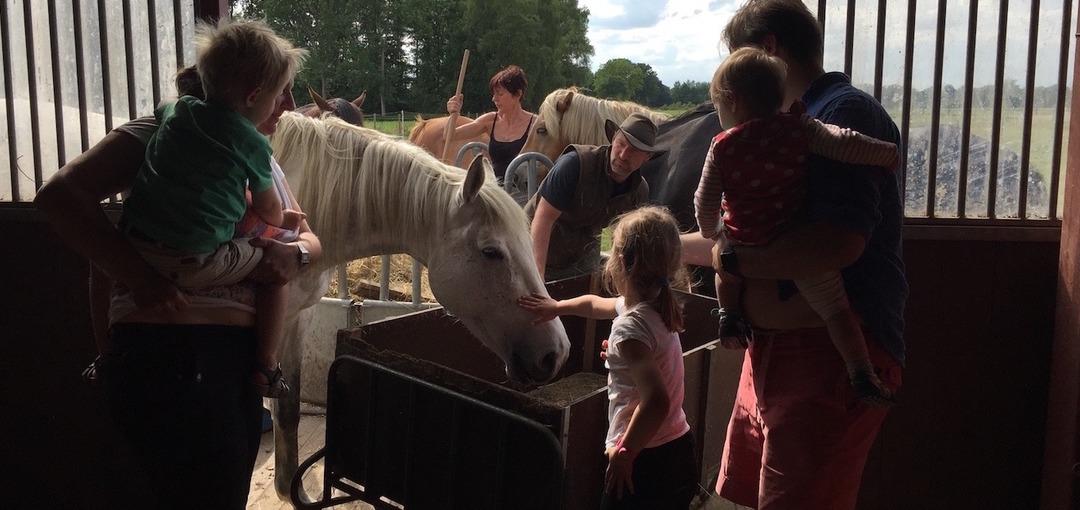 Gezinsvakantie paarden