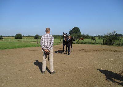 Gezinsvakantie met paarden. Vader dochter.