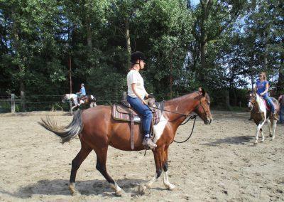 Cursus natuurlijk paardrijden