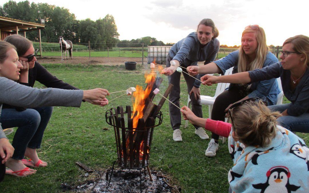 Paardenkamp: Horsemanship en bitloos westernriding met overnachting voor jongeren
