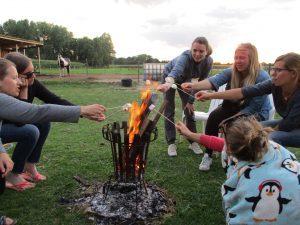 Paardenkamp - kampvuur met marshmallows