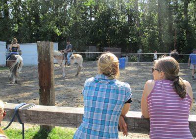 Paardenkamp bitloos paardrijden
