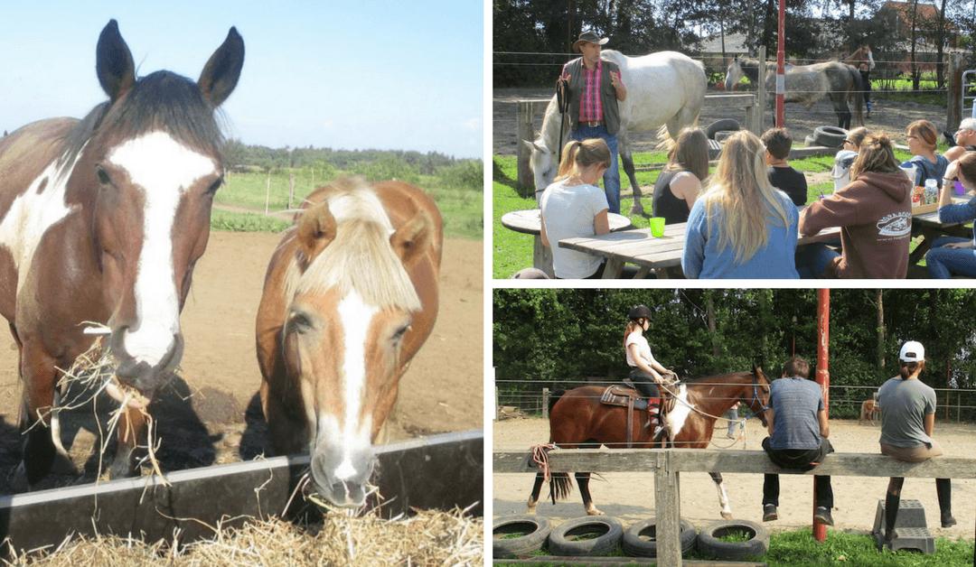 VOLZET – Gratis Werk-2-daagse en paardrijden