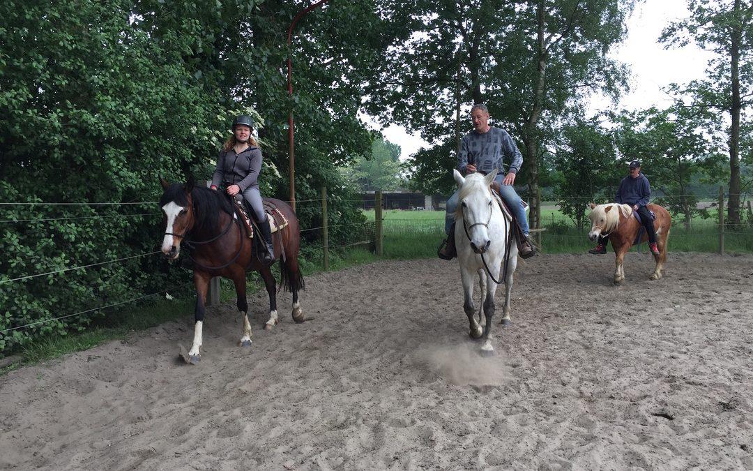 Paardenkamp: Horsemanship en bitloos westernriding met overnachting voor volwassenen (comfort)