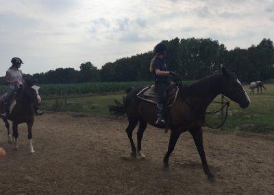 32-Paardenkamp-jongeren-bitloos-paardrijden