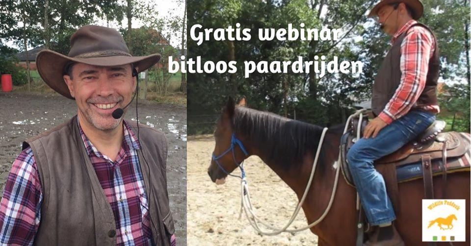 Gratis Webinar : Bitloos paardrijden